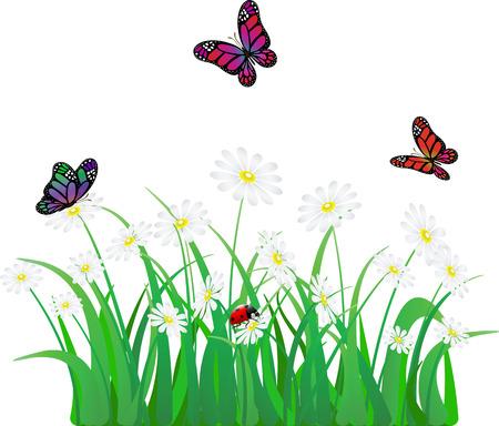 vector flower, grass, butterfly and ladybird Illustration