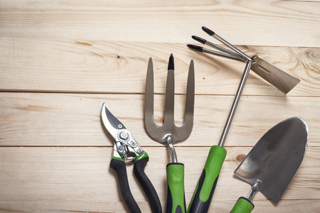 tool: Gruppe Gartengeräte auf Holzuntergrund