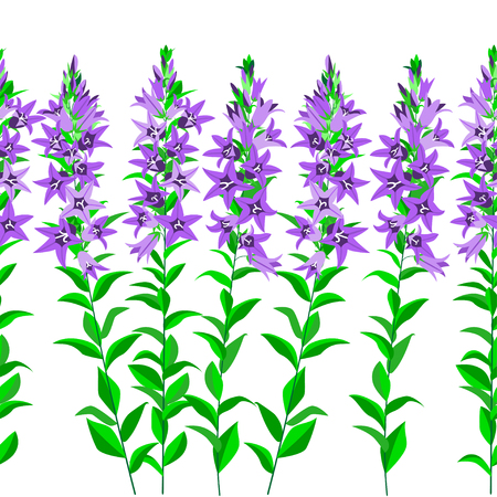 bluebell: Seamless horizontal pattern with bluebell. Isolated white background.