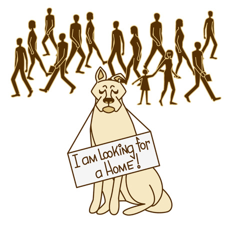Dog looking for owner. Vector illustration for an animal shelter. Isolated background.