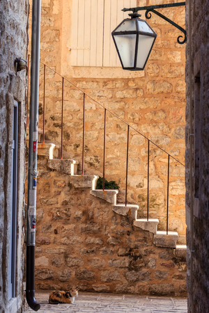 Cat near a staircase on a narrow street in Old Town Kotor, Montenegro, Europe Stock fotó