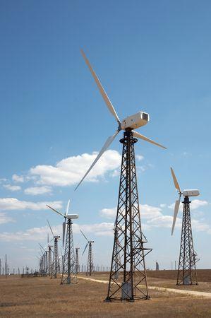 windfarm: Windmills in wind-farm