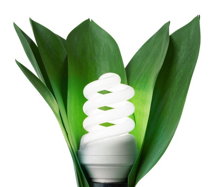 fluorescence: fluorescence lamp in green leaves of isolated on a white background