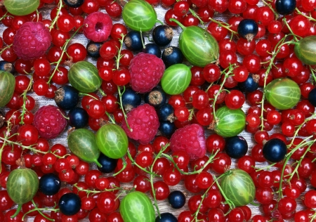 Mixed Berries background, on wood surface photo