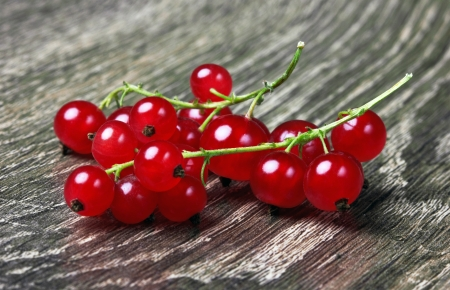 red currant: Red Currant on wood background