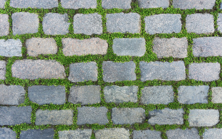 Old cobblestone background with grass photo