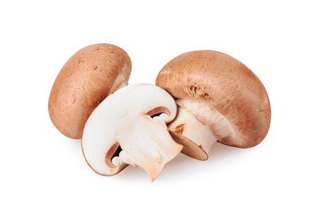 hongo: Champiñón de la seta aislada en el fondo blanco