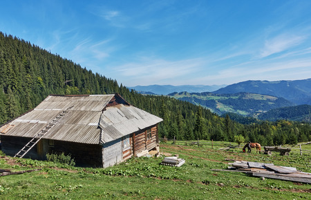 Mountains with forests and house. Carpathian Mountains, Ukraine, Europe