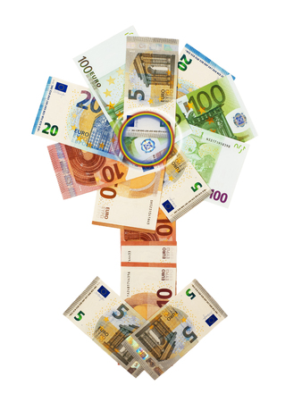 Flower arrow from cash Euro. The concept. Isolated.