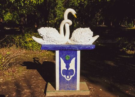 Sukhum, Abkhazia, - 03 January, 2013: Double swan stucco showing love on the stone pedestal in the Abkhaz park. Statues of two swans in the green park