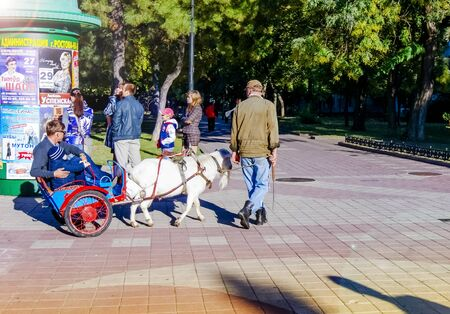 Rostov-on-Don,Russia - October 14,2012: The goat in a team carries people in a wheelchair attached to it in Rostov-on-Don Street. Редакционное