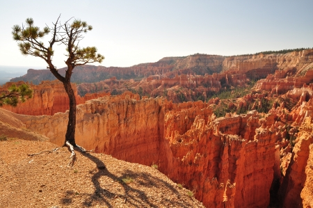 Panorama of Bryce Canyon NP, Utah, USA photo