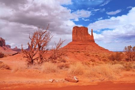 tribal park: Monument Valley Navajo Tribal Park Arizona USA