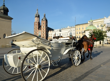Horse carriage krakow Poland