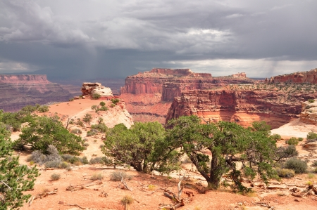 A view of Canyonlands National Park Stock Photo - 21428596