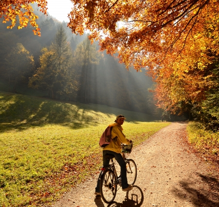Ride in autumn forest photo