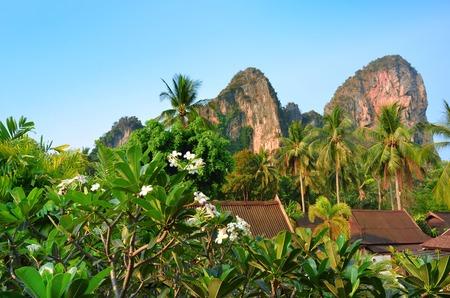 railay: Tropical landscape near Railay beach, Krabi, Thailand