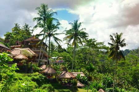 Tegalalang Rice Terrace Bali Indonesia Stock Photo