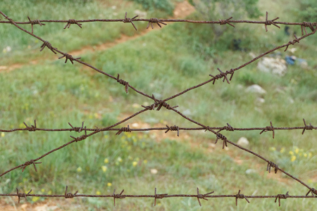 rusty barbed wire in on green grass countryside background