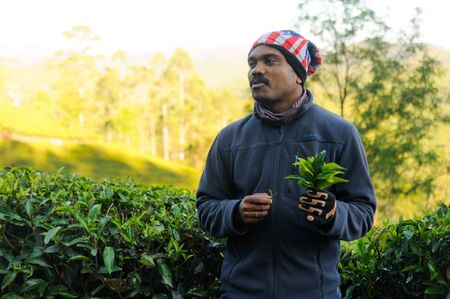 Indian guide telling about tea plantations during the excursion. 20 february 2018 Munnar, India