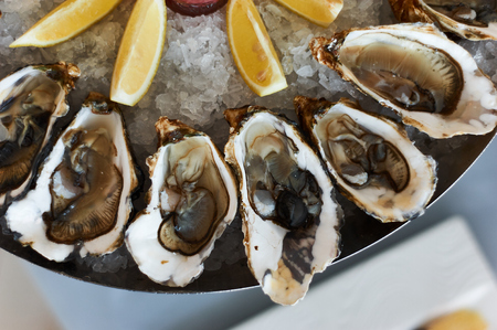 oysters in ice with sauce and slices of lemon. restaurant feed. closeup
