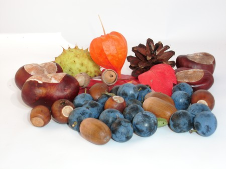 Fruits and nuts are ripe for Thanksgiving did
