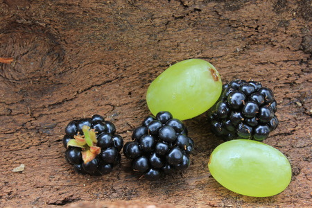 Still Life. Berries are part of a healthy diet