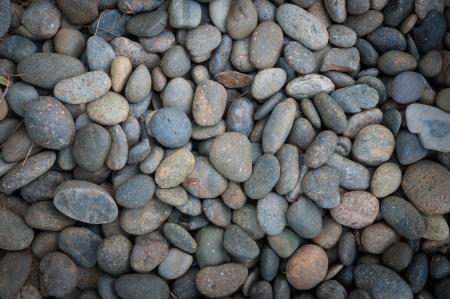 bedrock: Bedrock lot put together in the backyard