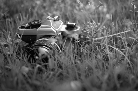 Film cameras that had been popular in the past Stock Photo - 23455933
