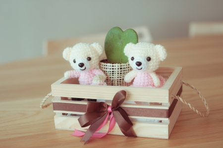 Bear dolls in a box for home interiors