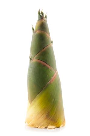 Shoot of Bamboo isolated on white background Stock Photo