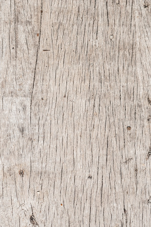 Gray wooden background of weathered distressed rustic wood photo