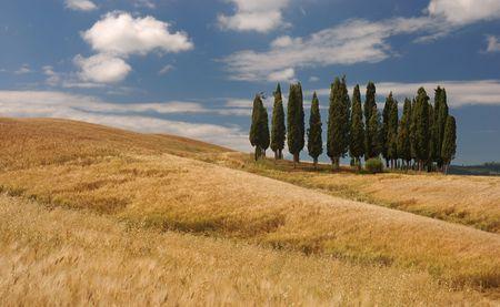 tuscany photo