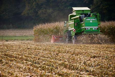 subsidy: Harvest