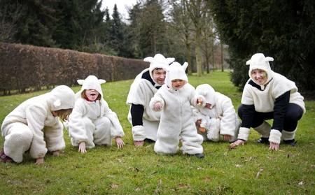sheep family Stock Photo - 4860265