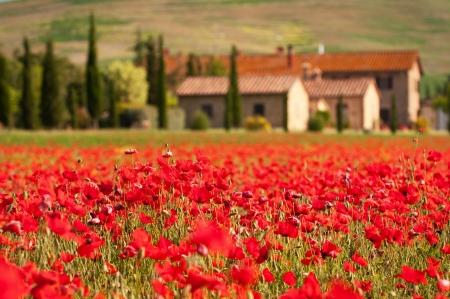 Tuscany Imagens