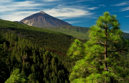 Teide view from Orotava valley