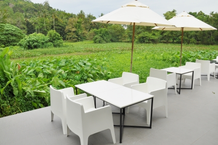 outdoor eating: Outdoor Eating
