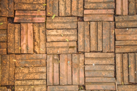 brick floor: Piso de ladrillo