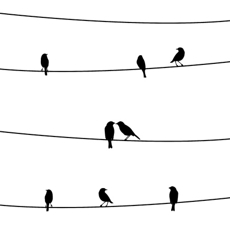 Birds on the wire  Ilustrace