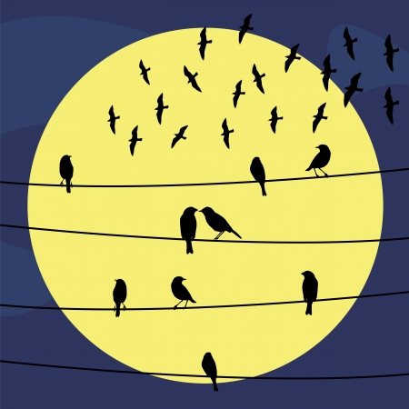 Birds on the wire at night  Illustration