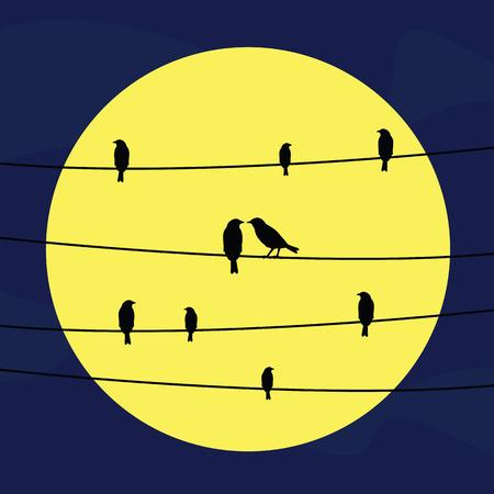Eine Silhouette von Vögeln an Drähten in der Nacht in Vollmondlicht.