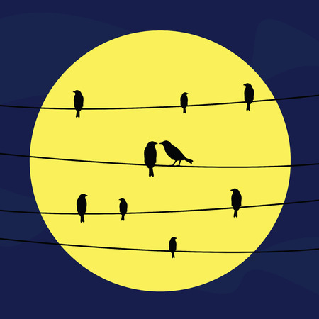 animal silhouette: A silhouette of birds on wires at night in full moon light. Illustration