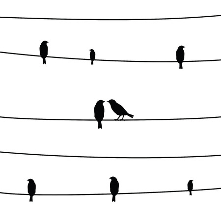 cling: A silhouette of birds on wires.