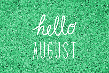 装飾用 8 月挨拶をこんにちは。