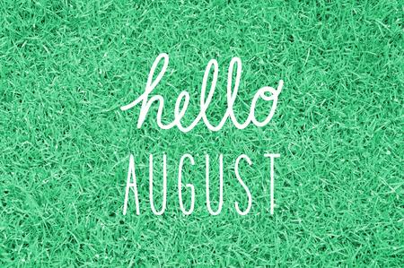 Hola saludo agosto para la decoración. Foto de archivo - 50852829