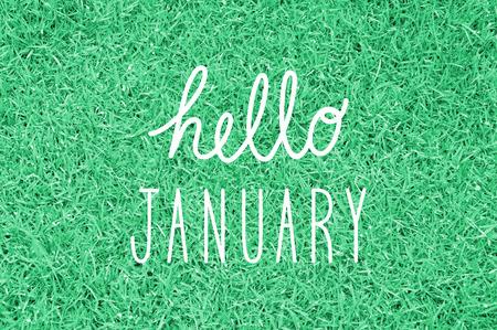 the january: Hola saludo enero para la decoraci�n.
