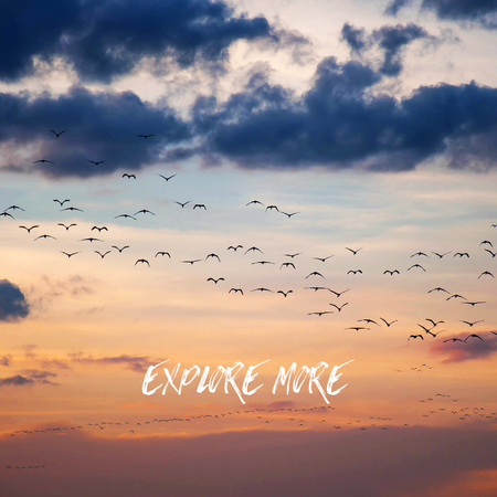 """Inspirational quote """"Explore more"""" on crowd of birds background. Stock Photo"""