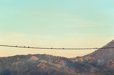 A silhouette of birds on wires near Kawah Ijen in East Java, Indonesia. Vintage tone.