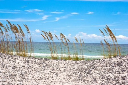 florida beach: A beach off of the Emerald Coast of Florida. Stock Photo